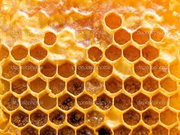 honeycomb - Google Search