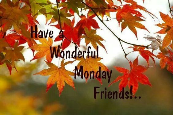 Have a wonderful Monday...