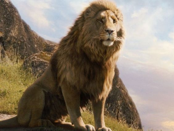 Quiz: Which character from the Chronicles of Narnia are you? I got Aslan! < well what do ya know...