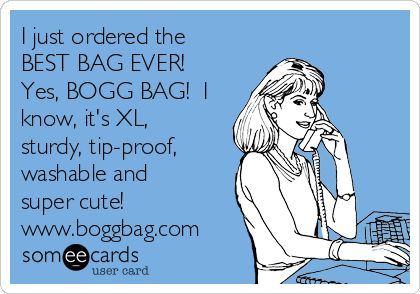 I just ordered the BEST BAG EVER! Yes, BOGG BAG! I know, it's XL, sturdy, tip-proof, washable and super cute! www.boggbag.com