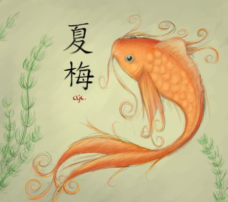 Chinese fish by nanscljc on deviantart drawing for Chinese koi fish