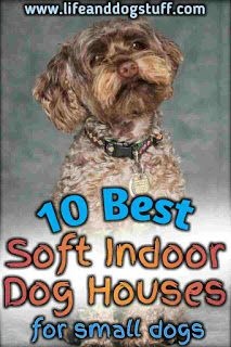 10 Best Soft Indoor Dog Houses For Small Dogs Small Dog Breeds