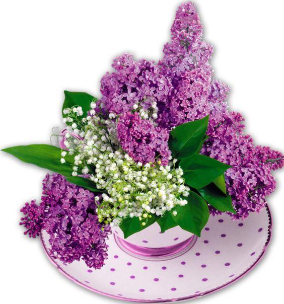 flowers, fleurs,bouquets de fleurs: