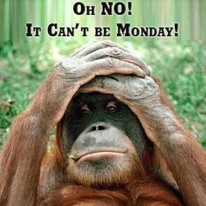 OH NO IT CANT BE MONDAY:-):