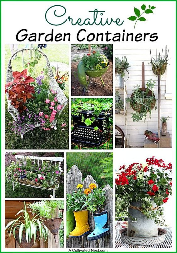 Pinterest the world s catalog of ideas - Unique container gardening ideas ...