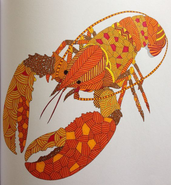 Animal Kingdom Coloring Book Examples Animals And Lobsters On