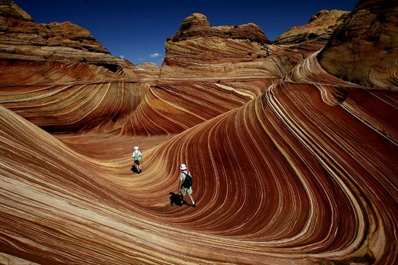 Arizona Wave - this place is for real?!