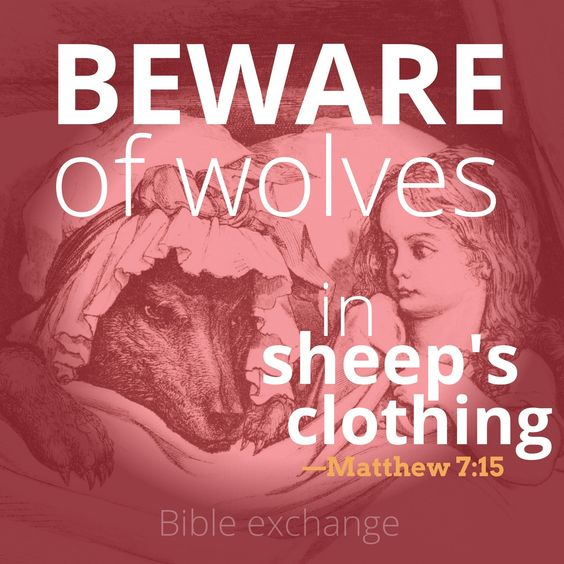 Matthew 7:15 Wolves in Sheep's Clothing