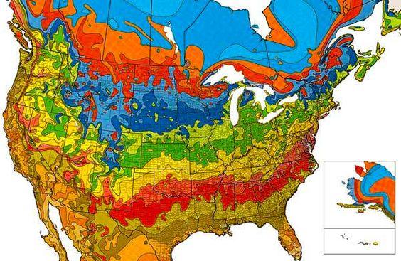know your USDA plant hardiness zone