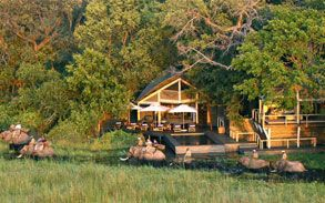 Guests at the Abu Camp in Okavango Delta, Botswana can interact with the resident elephants and ride on their backs in an elephant safari. All this in impeccable luxury.
