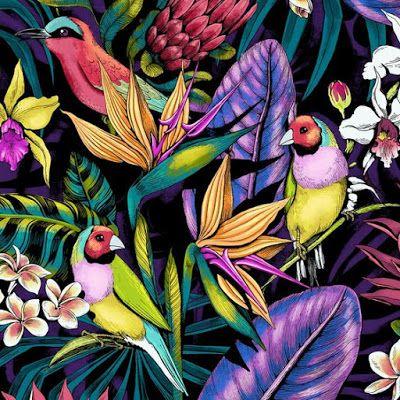 Imprimolandia: Estampado de pájaros tropicales para imprimir