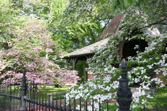 The main feature of this event is the Dogwood Trail that includes Historic Downtown, the Lower Town Arts District, and other residential neighborhoods, but there are actually several activities that you can enjoy during the peak season of the Dogwoods.
