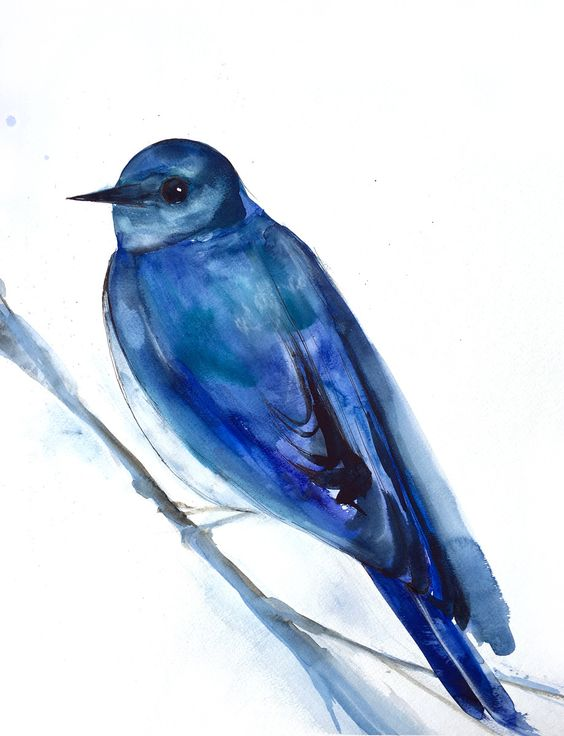 Bluebird Original Watercolor