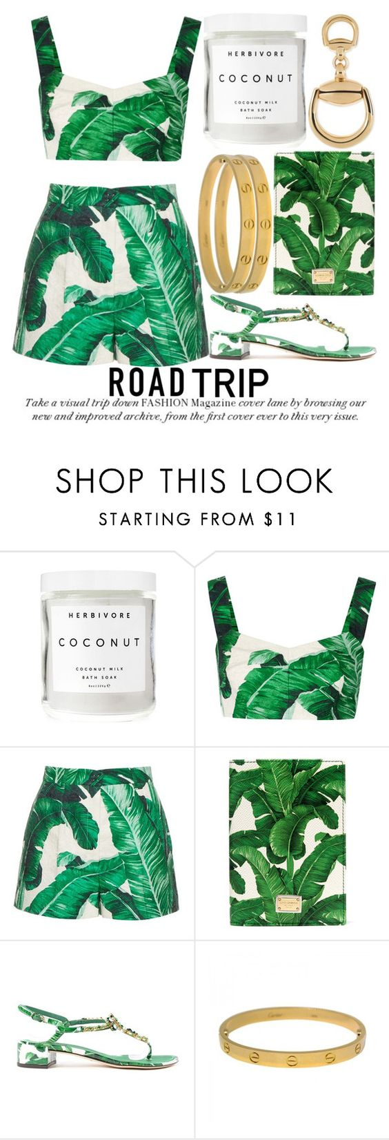 """""""ROAD TRIP #2"""" by noraaaaaaaaa ❤ liked on Polyvore featuring Herbivore, Dolce&Gabbana, Cartier, Gucci, GREEN, Dolce and roadtrip"""