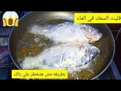 السمك المقلي في الماء بدون ولانقطه زيت طول عمرنا بنقلي السمك غلط كوب واحد هيغير النتيجه Youtube Bae Youtube The Originals