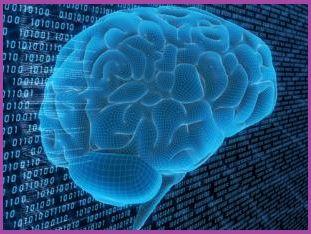 cérebro recebendo informações