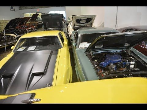 Massive Hoard Of Barn Find Muscle Mustang Ford Shelby Ford Shelby Mustang Shelby