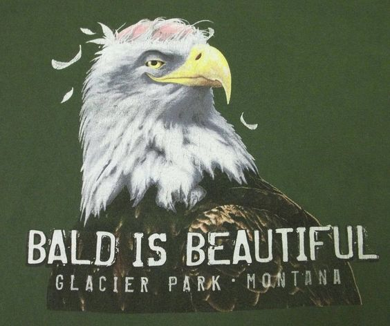 Bald is Beautiful Men's Funny Bald Eagle T-Shirt  #TheDuckCompany #GraphicTee