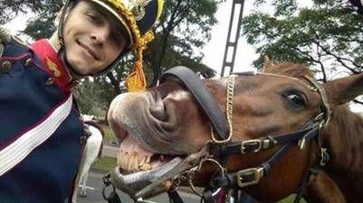 Selfie de un granadero argentino con su caballo en el dia de hoy, en los actos conmemorativos por el BICENTENARIO DE LA INDEPENDENCIA