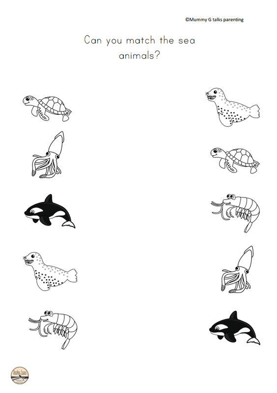 sea animals preschool activities sea animals science activities for preschoolers 457