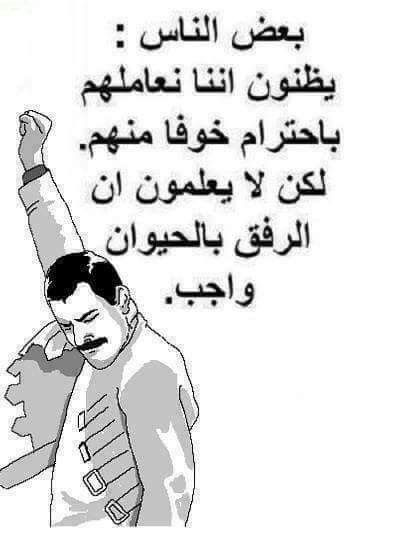 Pin By Abuomar Sabbagh On التاسعه مساء Sarcastic Words Funny Quotes Jokes Quotes