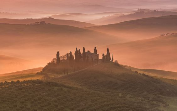 https://flic.kr/p/GbbunG | Another golden morning | Misty Morning - Tuscany - Italy