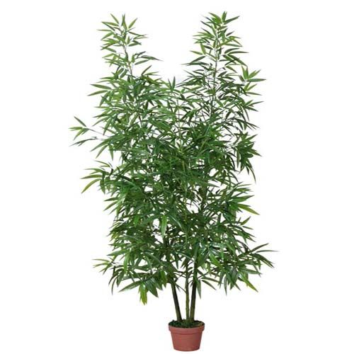 Artificial plant of Bamboo-IG827-2838