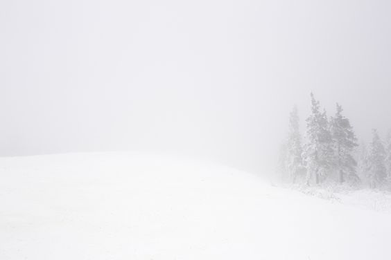 Snow Storm near Wiseman