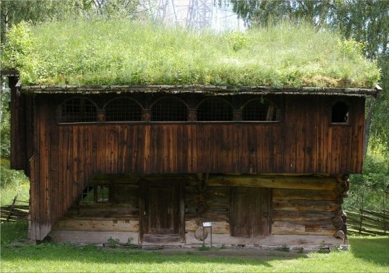 трава на крыше дома: 26 тыс изображений найдено в Яндекс.Картинках