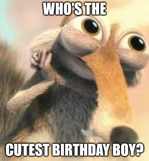 Who Is The Cutest Birthday Boy Ice Age Squirrel In Love Meme Funny Happy Birthday Wishes Funny Birthday Message Happy Birthday Coworker