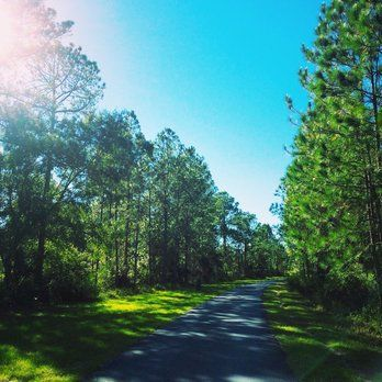Flatwoods Park - Flatwoods! - Tampa, FL, United States