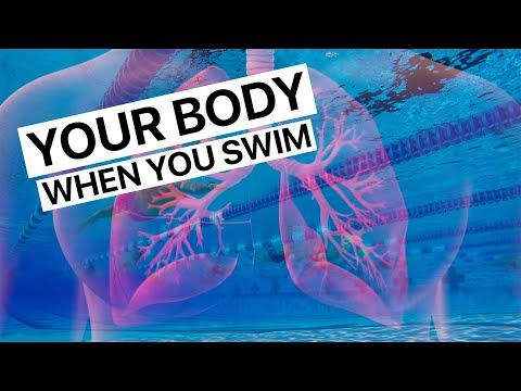What Happens To Your Body When You Swim Myswimpro In 2020 Swimming Motivation What Happened To You Swimming