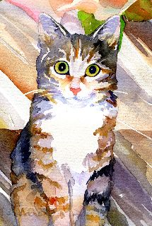 Gwen's Cat --  see the rest of her water colors at http://www.zazzle.com/gwengordonart/gifts?cg=196565267413375999