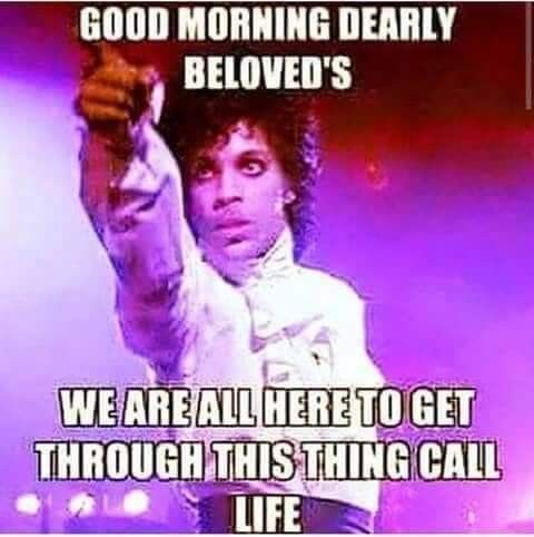 Pin By Exquisite Skin On Prince Memes Morning Quotes Funny Good Morning Quotes Funny Good Morning Memes