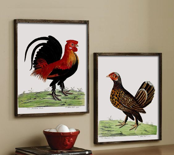 Chicken Birds Print Set Of 2 Large Wall Art Decor Kitchen Poster Bird Vintage Illustration Https Vintage Illustration Vintage Bird Illustration Bird Prints