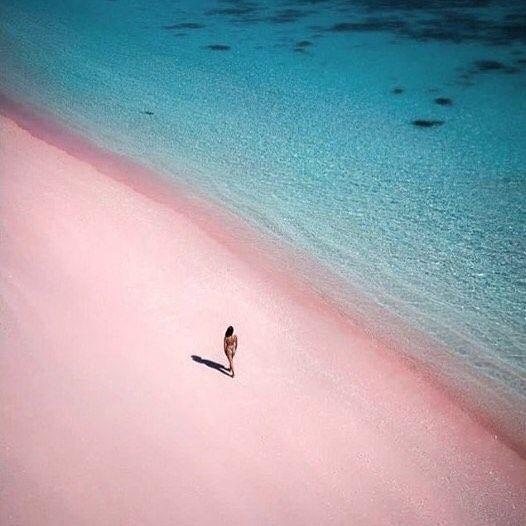 L île De Komodo Particulièrement Connue Pour être L Habitat Naturel Du Dragon De Komodo Abrite également Une Plage à La Teinte Rosée Beach Outdoor Water