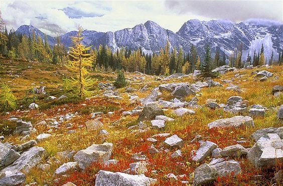 Imagem: Twisp (© ©Purestock/Purestock/Getty Images)Trecho do Parque Nacional de North Cascades na cidade de Twisp, Washington (EUA)