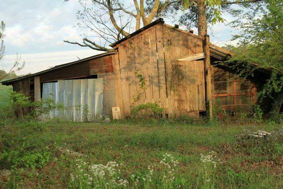 Family homestead barn. Eclectic Alabama