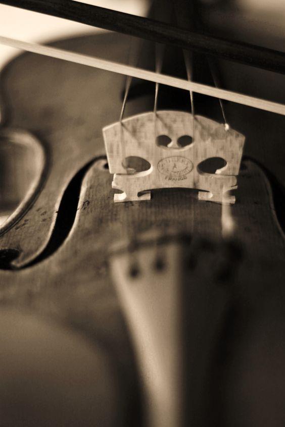 Elissa Rumford Photography #violin