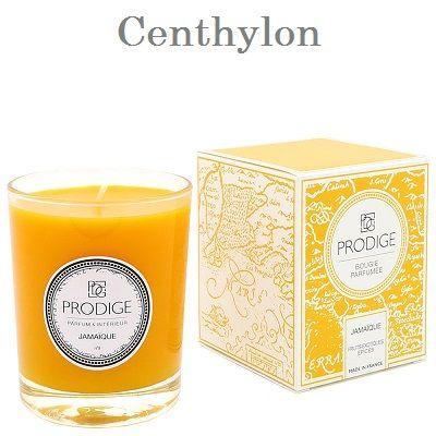 Vela perfumada de frutos exóticos y especias. Scented candle exotic fruits and spices.