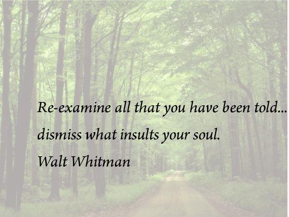 I love you Walt Whitman