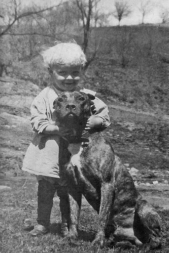 Little boy and his Pit Bull
