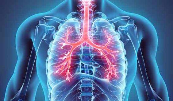 الرئتين اكتشف طرق الحماية والتنظيف الطبيعي لهما Lung Cleanse Respiratory Lunges