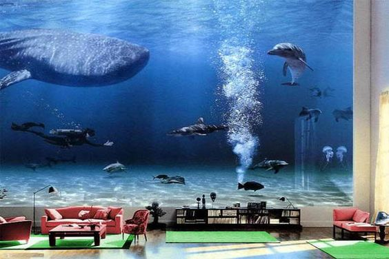 Bill Gates Living Room Aquarium Image 198 Now That 39 S An Interesting Image For The Wall Of Your