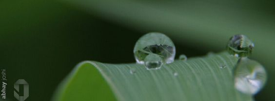 Water drops #macro #fb#covers #water #diamonds