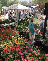 """Saturday Winter Park Farmers' Market.  """"The Winter Park Farmers' Market is held at the old train depot, located at 200 West New England Avenue, that has been restored into an historical landmark that hosts this NUMBER ONE produce and plant market in Central Florida. The market takes place every Saturday morning from 7 a.m. to 1 p.m. and is a popular community gathering place that provides fine produce, plants, baked goods and so much more.""""  (Buy Xocai there, too!) http://bit.ly/9kIYmD"""