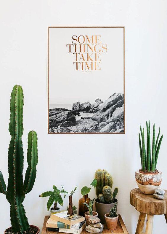 Wohnen // Ich brauche einen Riesen-Kaktus | Jane Wayne News