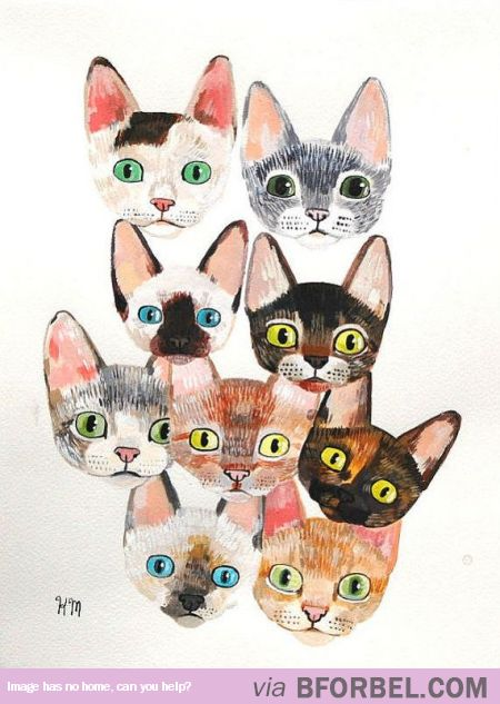How Everyone Looks Like To The Crazy Cat Lady… $55