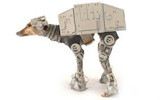 """Meet Bones Mello, the mysterious AT-AT dog who apparently already has his Star Wars Halloween costume picked out and built. Here's a gallery of the making of this now-famous whippet's costume, where he's not looking too happy about the process.     Listed as a """"public figure"""" on Facebook, he says..."""