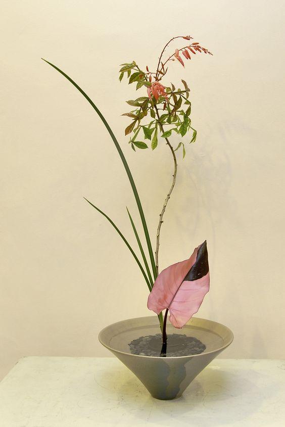 Ikebana ikenobo shoka shimputai japan flower arrangement